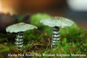 Marsha Neal Studio Terrarium Mushrooms